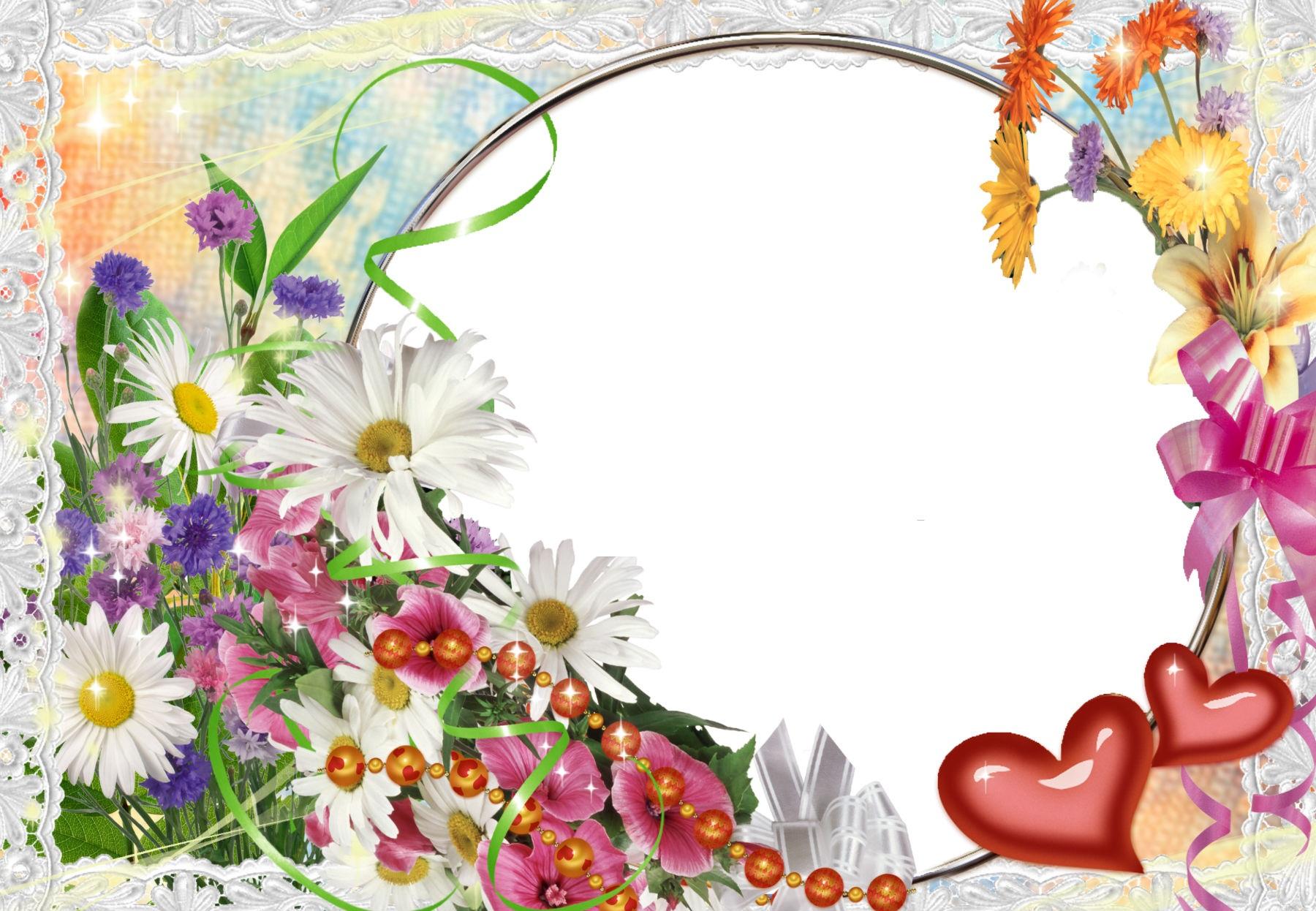 Красивые цветы для вставки на фото